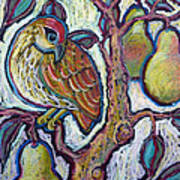 Partridge In A Pear Tree 1 Art Print