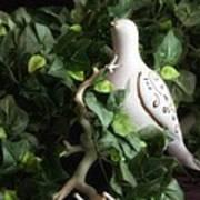 Partridge In The Ivy Art Print
