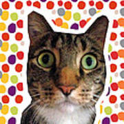 Party Animal - Smaller Cat With Confetti Art Print