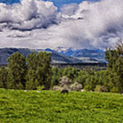 Pastures And Clouds  Art Print