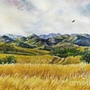 Patagonia Just Down The Valley Art Print by Summer Celeste