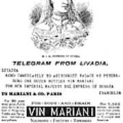 Patent Medicine, 1894 Art Print