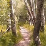 Path 1 Art Print