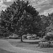 Path At Michigan State University Garden  Art Print