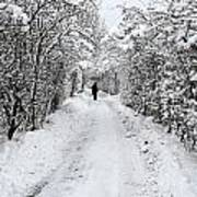Path In The Snow In Winter In Denmark Art Print