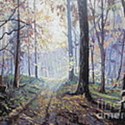 Path In The Woods Art Print by Andrei Attila Mezei