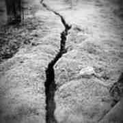 Path Taken Art Print