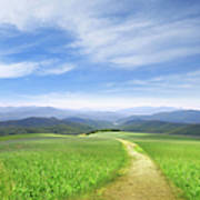 Path Through Field Leading To Distant Art Print