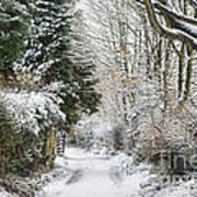 Path Through The Snow Art Print