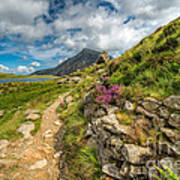 Path To Lake Idwal Art Print by Adrian Evans