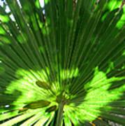 Green Plant Pattern Art Print