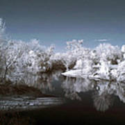 Peace River North Near Infrared Arcadia Florida Usa Art Print