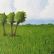 Peace River Prairie Art Print