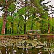 Peaceful Pond Art Print