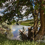 Peaceful View Art Print by Robert Bales