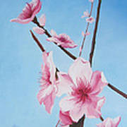 Peach Blossoms Art Print