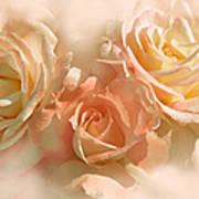 Peach Roses In The Mist Art Print