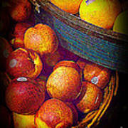 Peaches And Citrus With Blue Wooden Basket Art Print