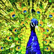 Peacock Abstract Realism Art Print