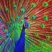 Peacock In Front Of Red Barn Art Print