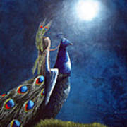 Peacock Princess II By Shawna Erback Art Print