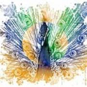 Peacock Splash Art Print by Diana Shively