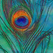 Peacock's Gift 2 Art Print
