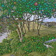Dawn At Peaks Island Bay Art Print