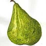 Pear Study#3 Art Print