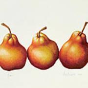 Pears Print by Annabel Barrett