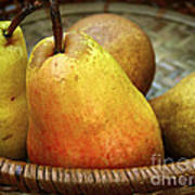Pears In A Basket Art Print