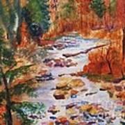 Pebbled Creek Art Print