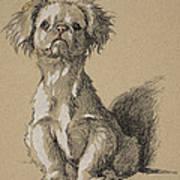 Peke, 1930, Illustrations Art Print
