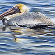 Pelican At Cedar Point Art Print