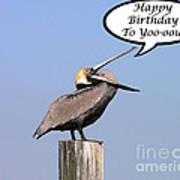 Pelican Birthday Card Art Print