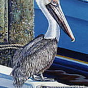 Pelican Blues Art Print