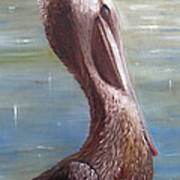 Pelican Brief Art Print by Sharon Burger