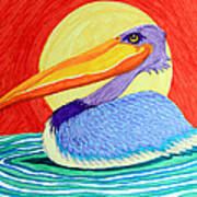 Pelican In The Sun  Art Print