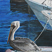 Pelican On A Boat Art Print