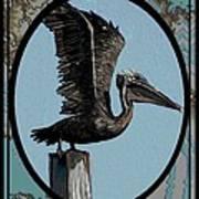 Pelican Paradise Art Print