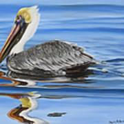 Pelican Ripples Art Print