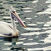Pelican With Abstract Water Reflections I Art Print