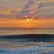 Pelicans At Sunrise 9 10/18 Art Print