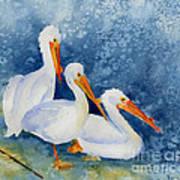 Pelicans At The Weir Art Print by Pat Katz