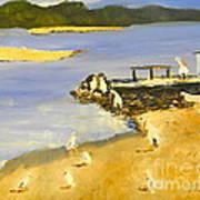 Pelicans On The Shore Art Print