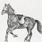 Pencil Drawing Of A Running Horse Art Print by Kiril Stanchev