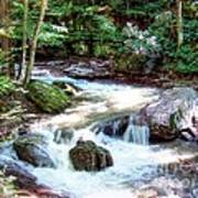 Pennsylvania Creek Art Print