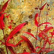 Penstemon Abstract 4 Art Print