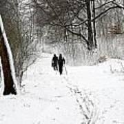 People On Ski  In Snowy Landscape Art Print