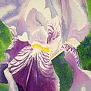 Perfectly Purple Art Print